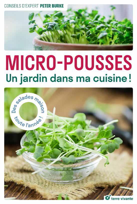 Micro-pousses ; un jardin dans ma cuisine !