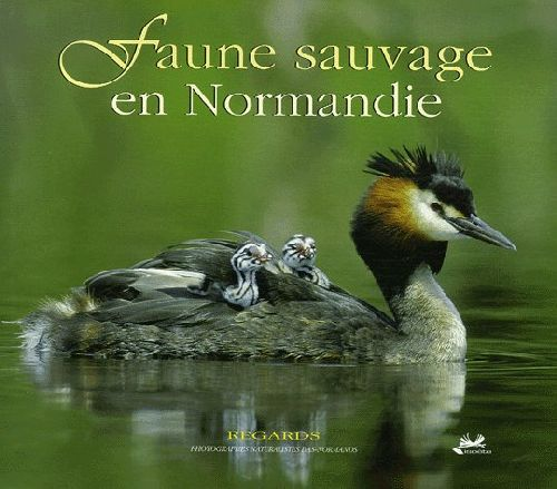 Faune sauvage en Normandie