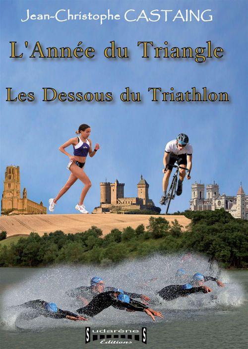 L'année du triangle ; les dessous du triathlon  - Jean-Christophe Castaing