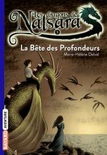 Vente Livre Numérique : Les dragons de Nalsara, Tome 05  - Alban Marilleau - Marie-Hélène Delval