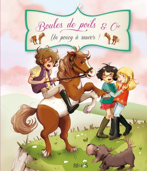 BOULES DE POILS & CIE ; un poney à sauver !