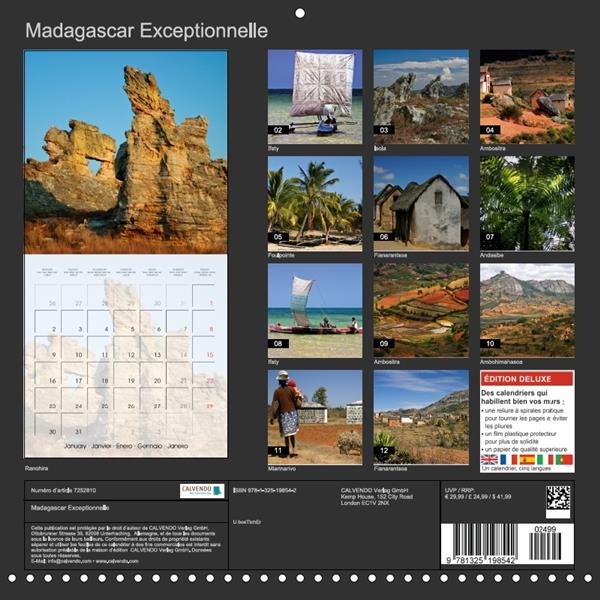 Madagascar exceptionnelle (calendrier mural 2017 Square)