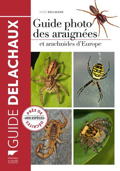 Guide photo des araignées et arachnides d'Europe