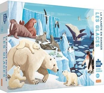 La planète en danger ; les glaces