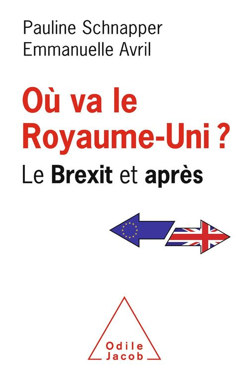 Où va le Royaume-Uni ? ; le Brexit et après