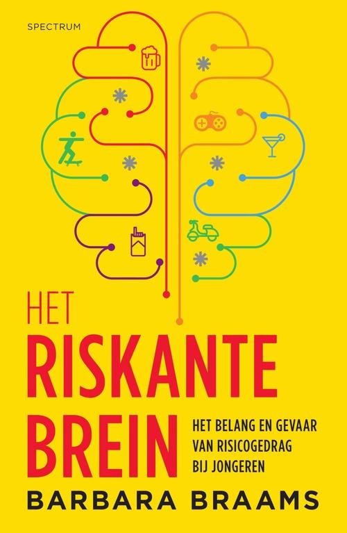 Het riskante brein