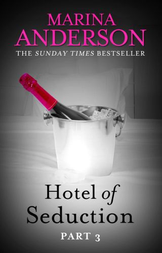 Hotel of Seduction: Part 3