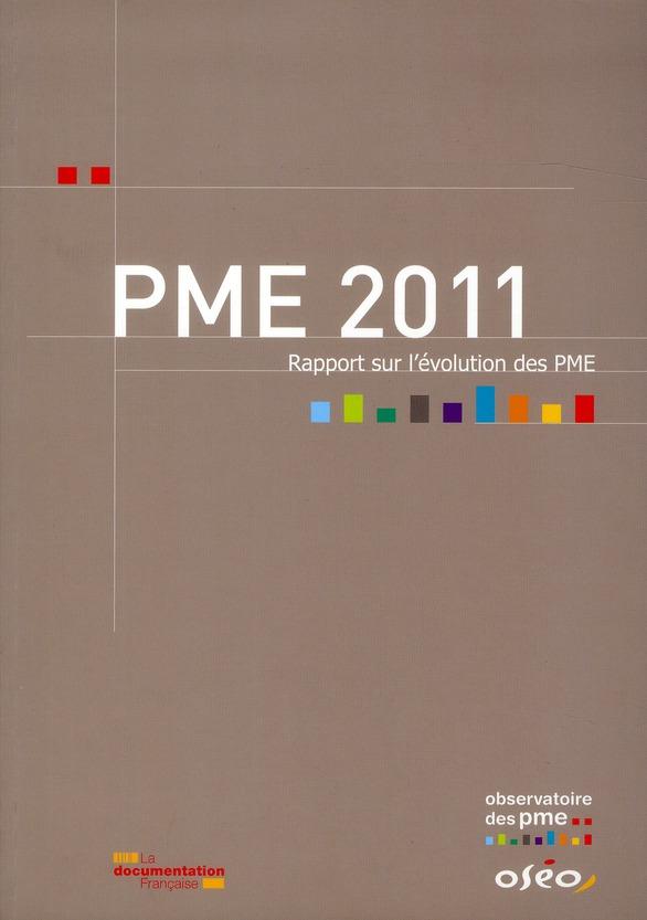 PME 2011 ; rapport sur l'évolution des PME