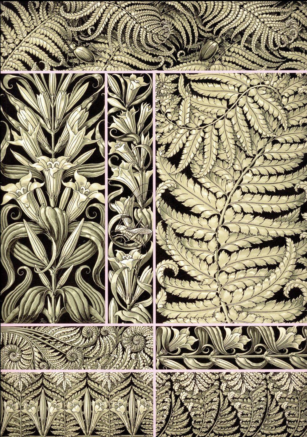 Fantaisies & ornements ; planches décoratives d'Anton Seder