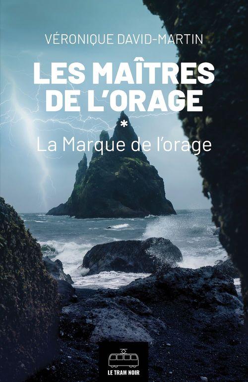 Les maîtres de l'orage t.1 : la marque de l'orage  - Véronique David-Martin