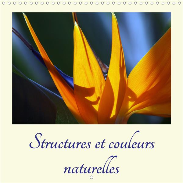 Structures et couleurs naturelles (calendrier mural 2021 300 * 300 mm square) - un regard fascinant