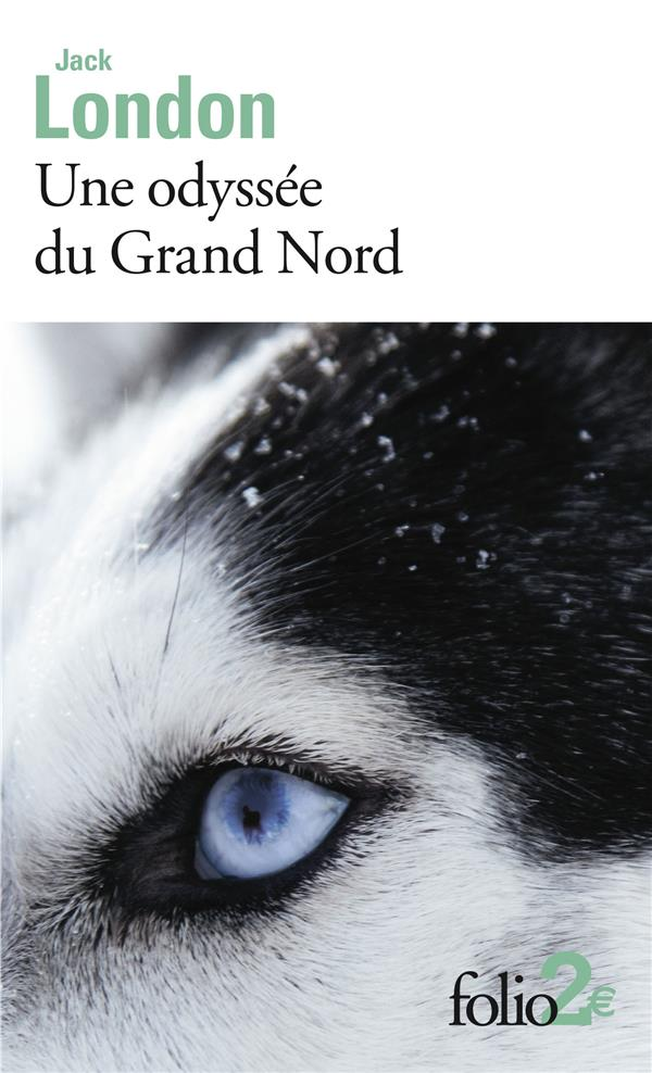 UNE ODYSSEE DU GRAND NORD  LE SILENCE BLANC
