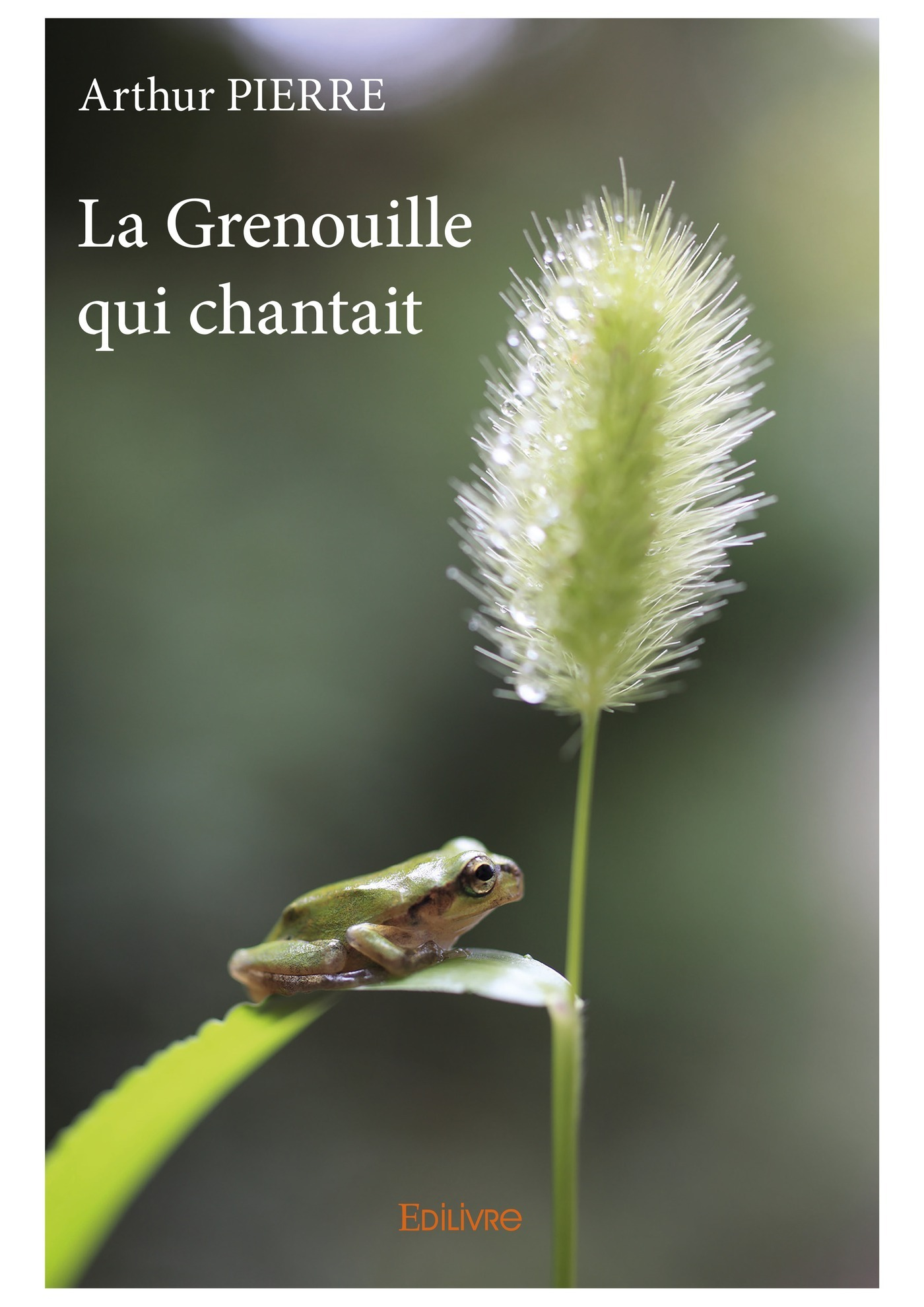 La Grenouille qui chantait  - Arthur Pierre