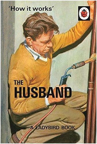 The ladybird book : how it works : the husband