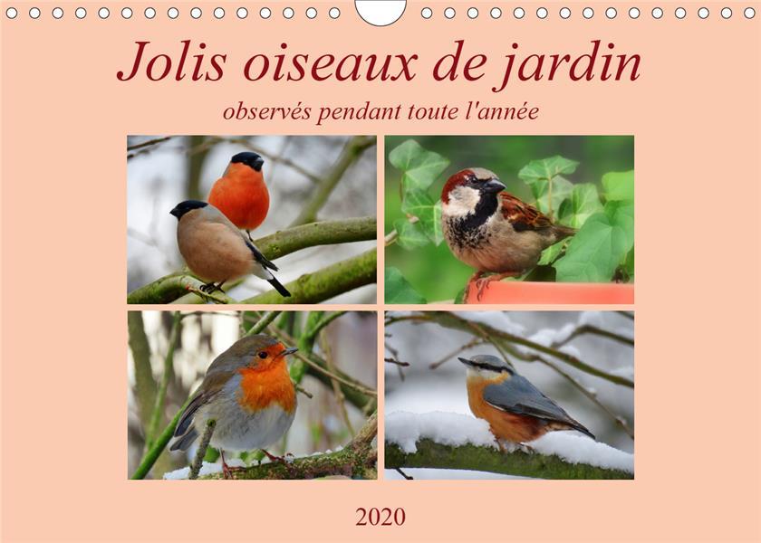 Jolis oiseaux de jardin (édition 2020)