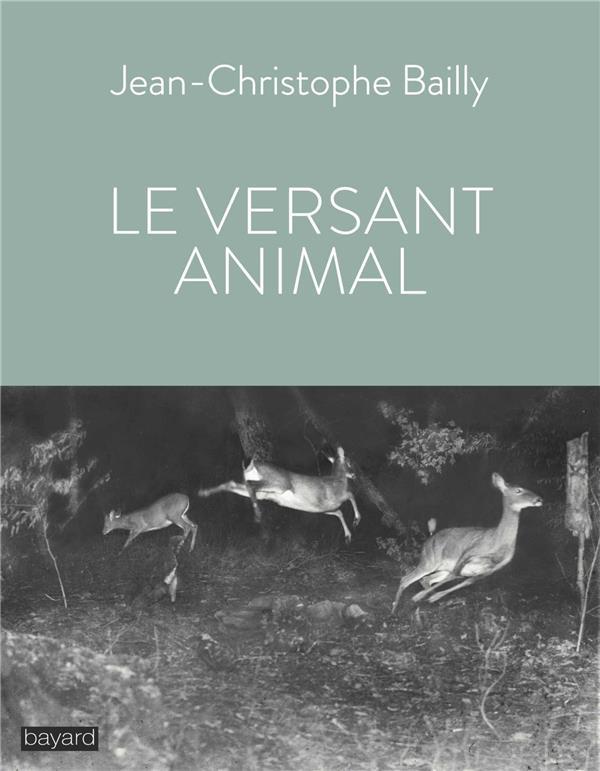 LE VERSANT ANIMAL