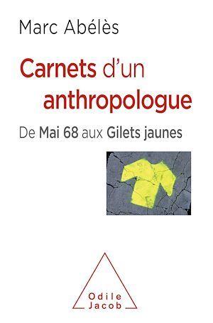 Carnets d'un anthropologue ; de Mai 68 aux gilets jaunes
