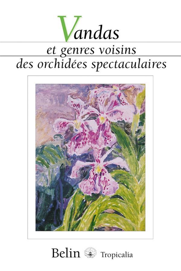 Vandas Et Genres Voisins Des Orchidees Spectaculaires
