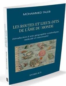Les routes et les lieux-dits de l'âme ; introduction à une géographie symbolique, radicale et visionnaire