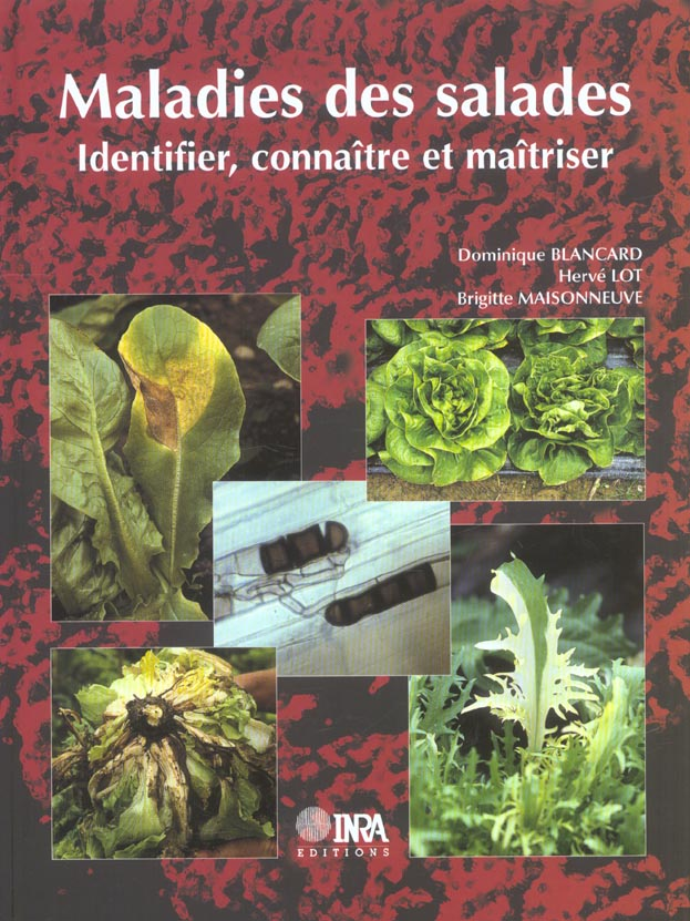 Maladies Des Salades. Identifier, Connaitre Et Maitriser