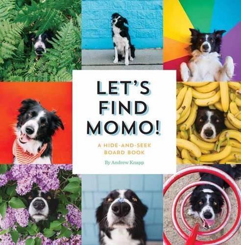 Let's find momo !