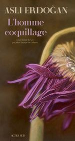 Vente EBooks : L'Homme Coquillage  - Asli Erdogan