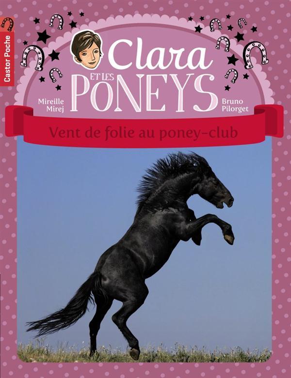 Clara et les poneys t.8 ; vent de folie au poney-club