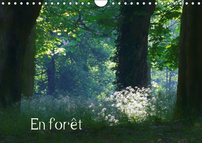 En forêt (Calendrier mural 2016 DIN A4 horizontal) ; Ambiances forestières (Calendrier mensuel)
