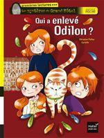Vente Livre Numérique : Qui a enlevé Odilon ?  - Christine Palluy
