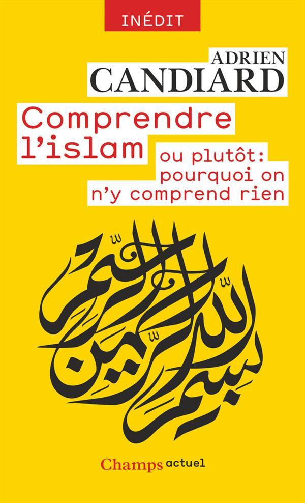 COMPRENDRE L'ISLAM  -  OU PLUTOT : POURQUOI ON N'Y COMPREND RIEN