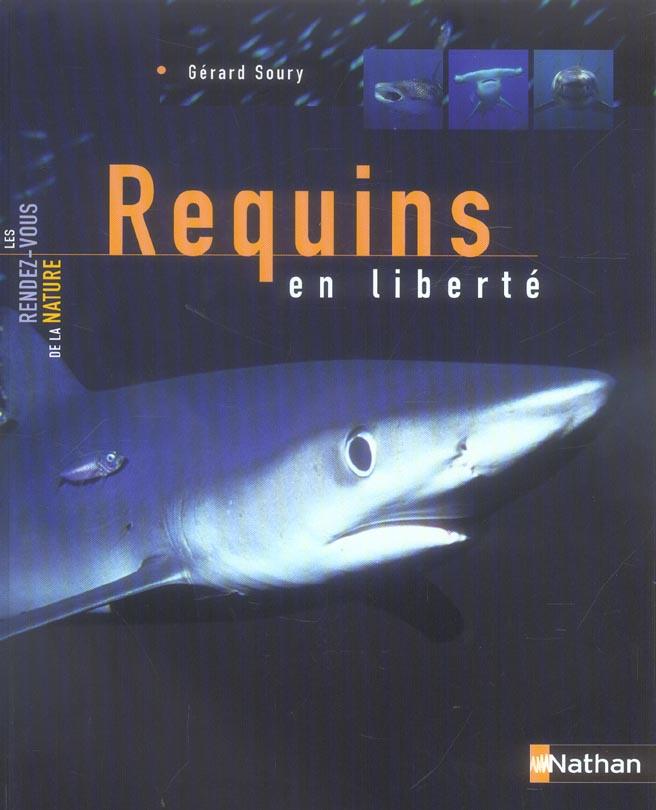 Requins en liberte