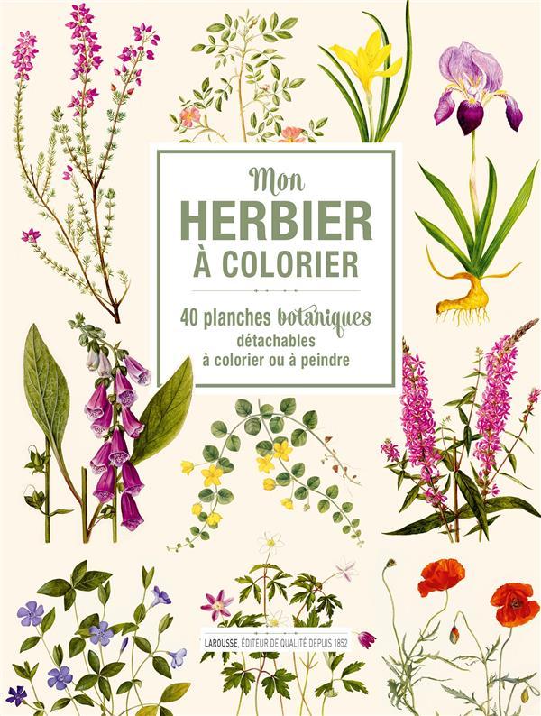 Mon herbier à colorier ; 40 planches botaniques détachables à colorier ou à peindre