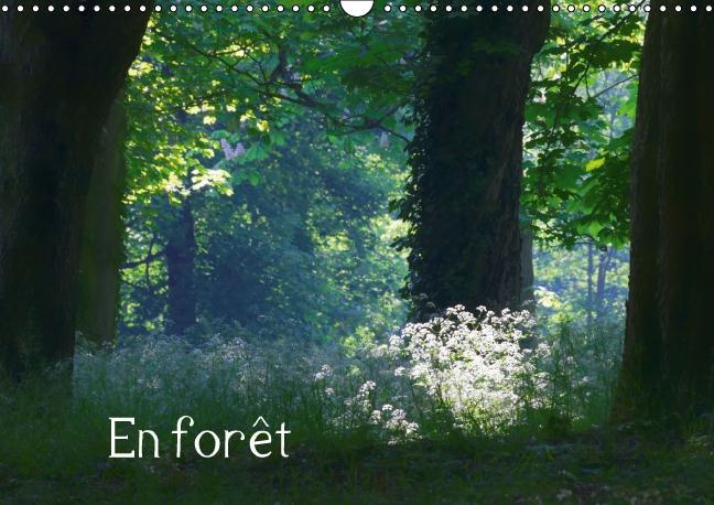 En forêt (Calendrier mural 2016 DIN A3 horizontal) ; Ambiances forestières (Calendrier mensuel)