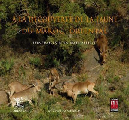 A La Decouverte De La Faune Du Maroc Oriental ; Itineraires D'Un Naturaliste