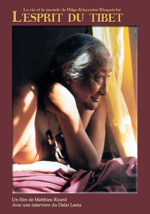 L'esprit du Tibet ; la vie et le monde de Dilgo Khyentsé Rinpotché