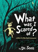WHAT WAS I SCARED OF? - A GLOW-IN-THE-DARK ENCOUNTER