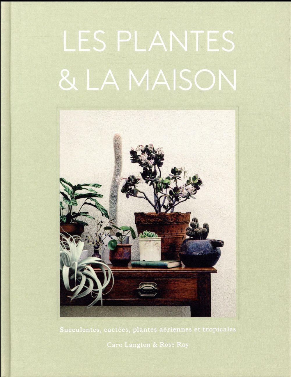 Les plantes & la maison ; succulentes, cactées, plantes aériennes et tropicales