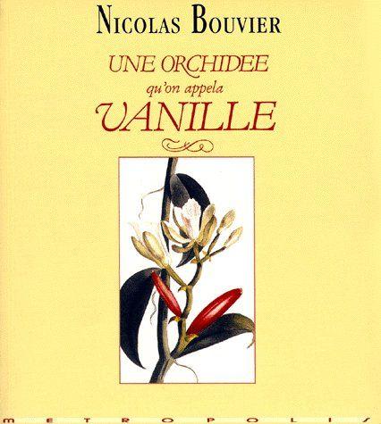 Une orchidée qu'on appela Vanille