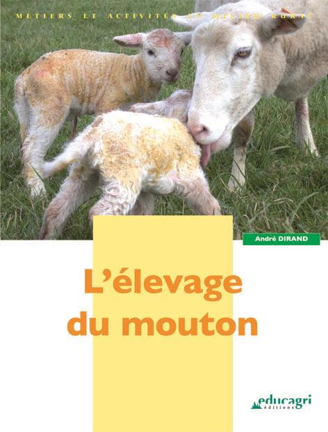 L'Elevage Du Mouton