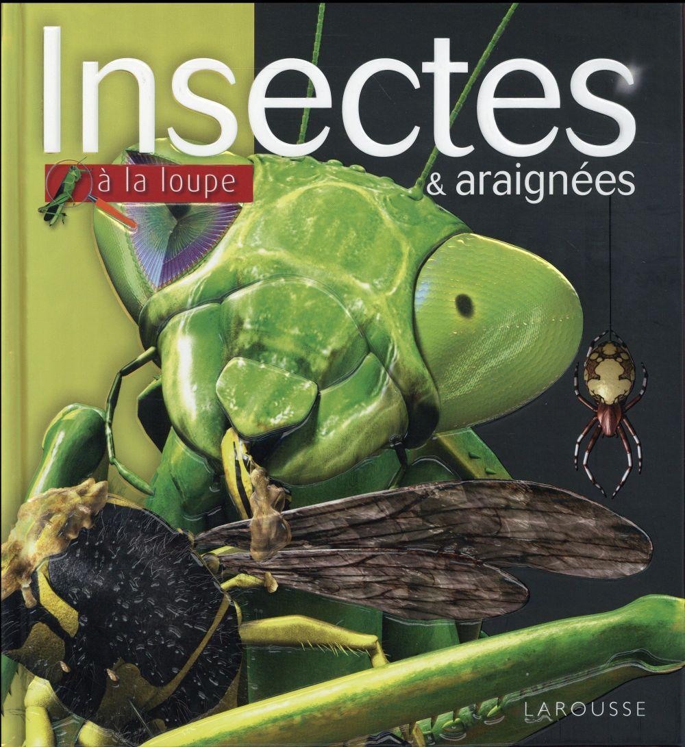 Les insectes et araignées