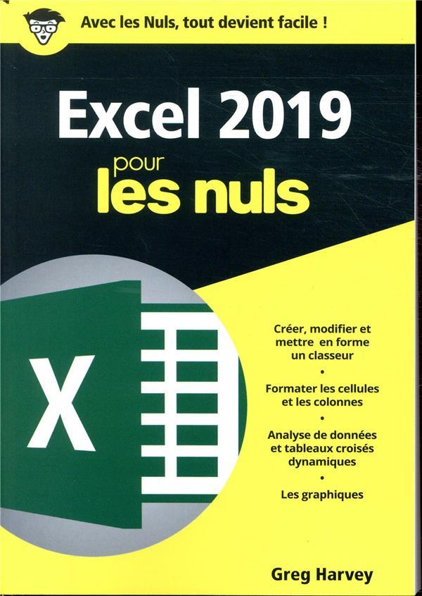 EXCEL 2019 POCHE POUR LES NULS