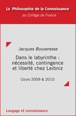 Vente EBooks : Dans le labyrinthe: nécessité, contingence et liberté chez Leibniz  - Jacques BOUVERESSE