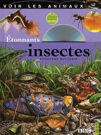 étonnants insectes