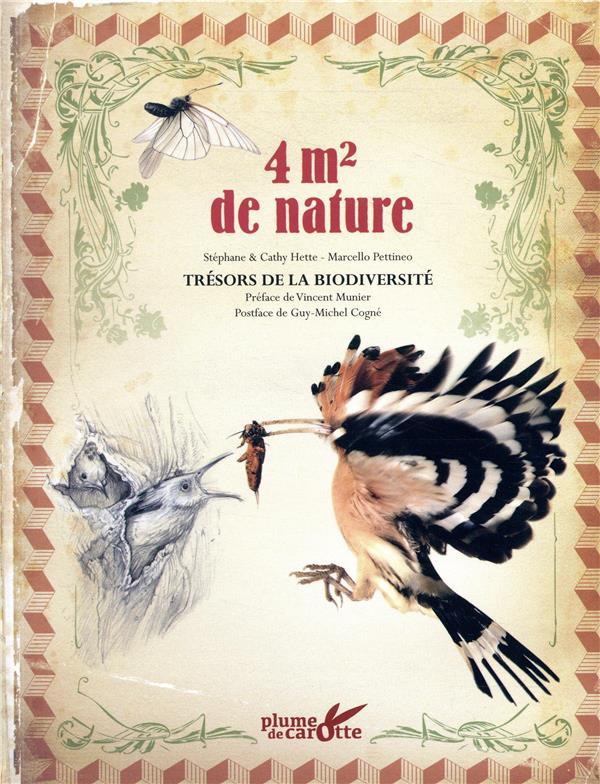 4m2 de nature ; trésors de la biodiversité