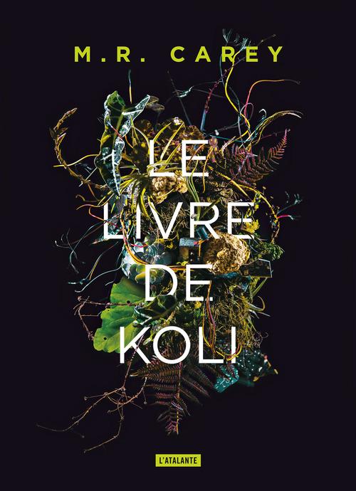 remparts t.1 : le livre de Koli