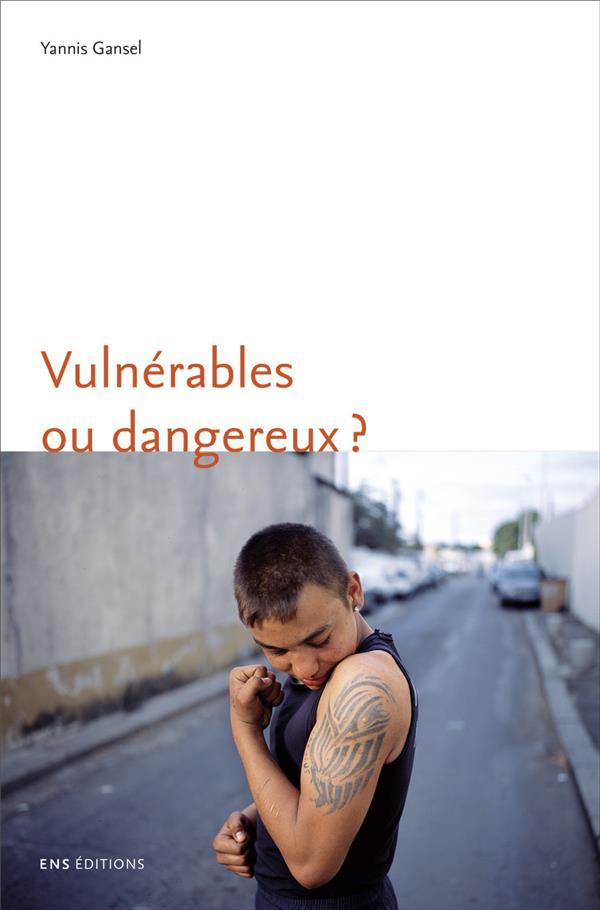 Vulnerables ou dangereux ? une anthropologie du souci des adolescents  difficiles
