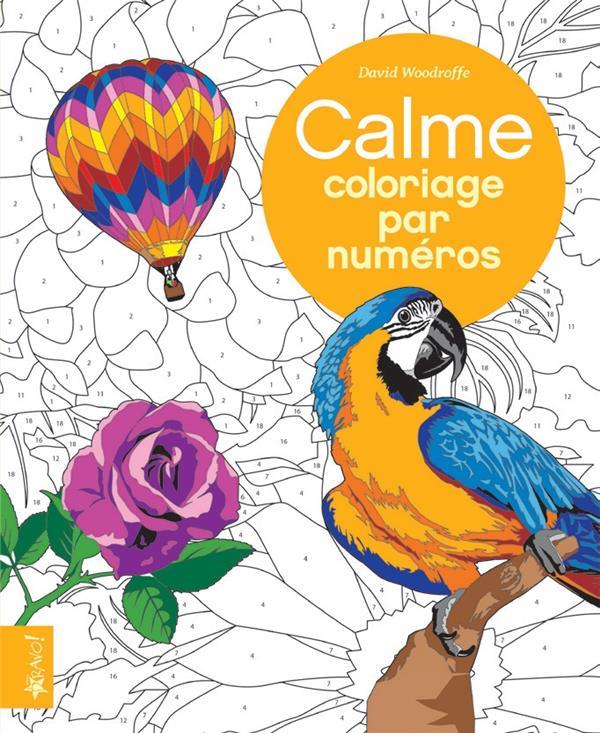 Coloriage par numéro ; calme