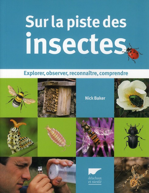 Sur la piste des insectes ; explorer, observer, reconnaître, comprendre