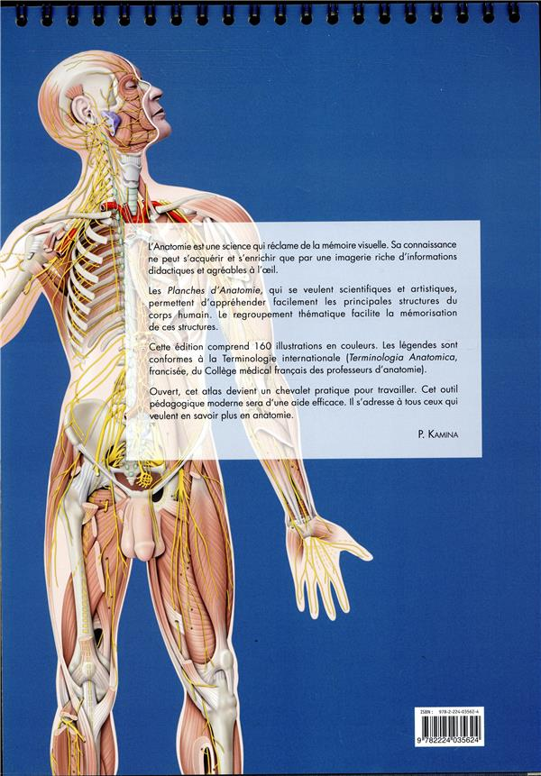 Planches d'anatomie humaine. 31 planches. reliure a spirale, 3e ed.