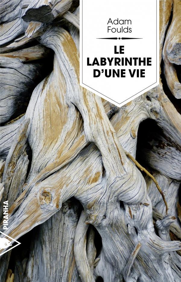 Le labyrinthe d'une vie